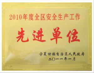 2010年度全区安全生产先进单位